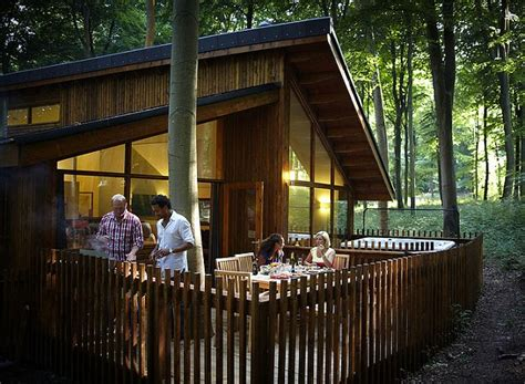 Small Log Cabin Designs autumn breaks escaping to blackwood forest daily mail