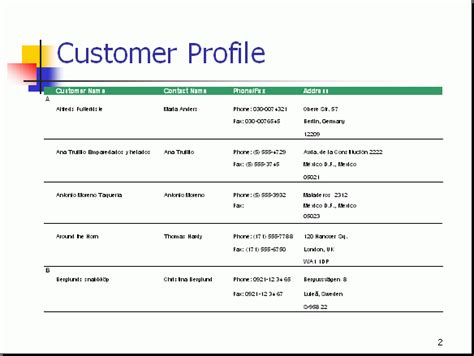 sales customer profile template customer profile lists information about the target