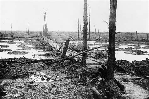 5 themes of geography belgium human environment interaction world war i and the five