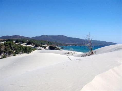 wohnungen sardinien wohnungen in sardinien nur 5 km vim strand entfernt