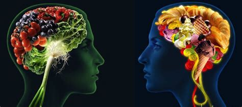 healthy fats and brain health 7 foods to optimize brain function conscious cooking