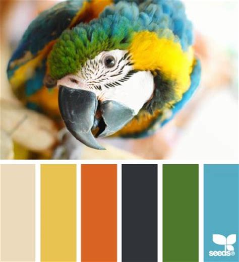 parrot green color palette colors color palettes and design seeds on pinterest