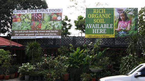 Tree Shop White Plains - 7 must visit garden shops in white plains quezon city rl