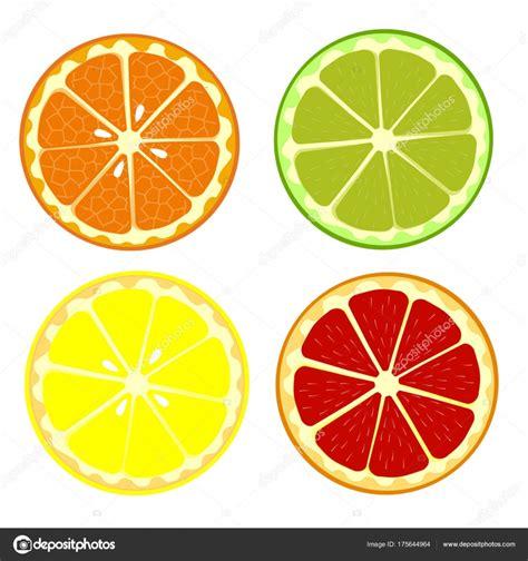 raccolta clipart set di arancio frutta limone lime pompelmo raccolta di