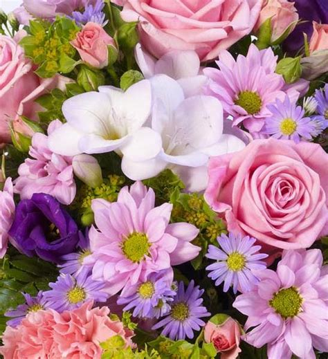 classic lilac  pink posy funeral flowers london
