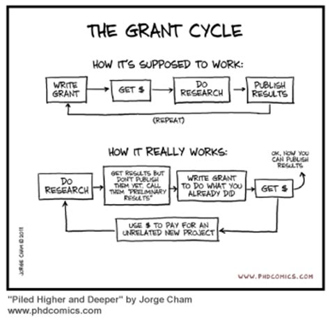 phd advisor moving 5 steps to writing grant proposals for grad students