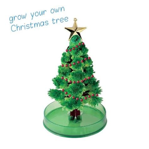 grow your own christmas tree kit best gifts to get for 2014 s gift ideas