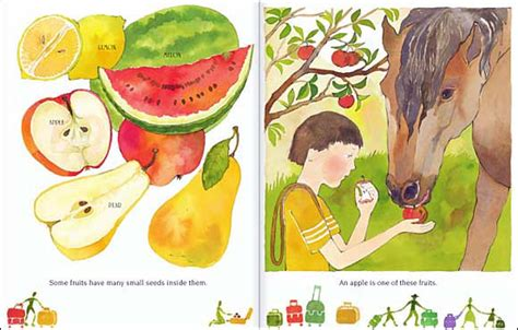 a fruit is a suitcase for seeds a fruit is a suitcase for seeds by jean richards anca