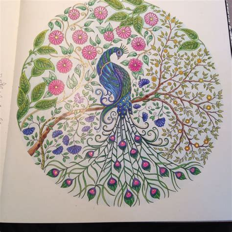 secret garden coloring book peacock peacock in johanna basford s secret garden coloring