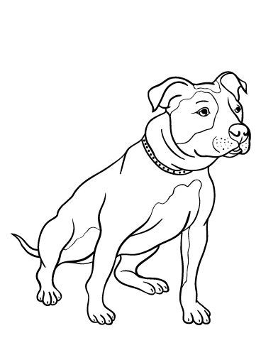 coloring pages of pitbull dogs 17 best images about pit bull color pages on pinterest