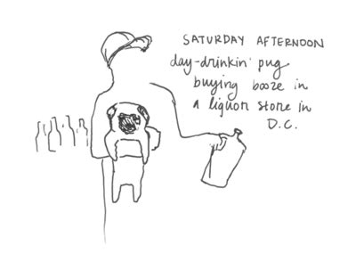 new yorker pug cover pug the triumphant return of s every pug in new york