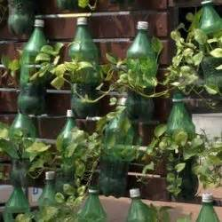 vasi con bottiglie di plastica come fare dei vasi con vecchie bottiglie di plastica