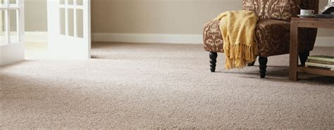 rug cleaning sydney carpet cleaning services sydney free quotes carpet cleaners
