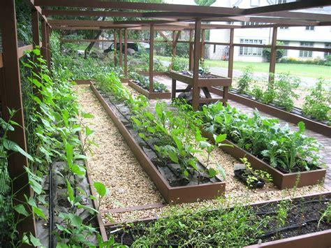 school garden ideas school gardens ideas image mag