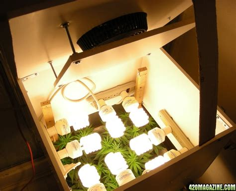 Cfl Grow Light Setup by Grow Box Done Does It Look Like A Spot For Growing