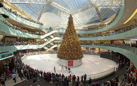 nation s tallest indoor christmas tree takes root in a
