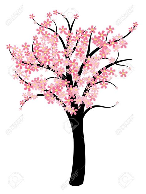cherry blossom clip 1000 images about cherry blossom vector clipart png on