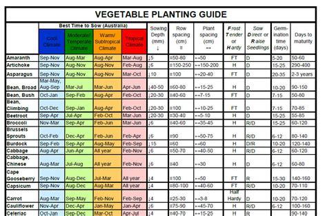vegetable garden planting guide perth garden ftempo