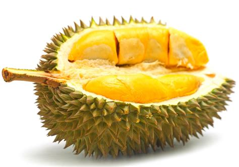 durian fruit recipes images