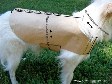dog clothes pattern making pet clothes pattern maybe for a thunder shirt noah the