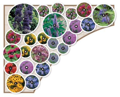 Butterfly Garden Layout Butterfly Garden Design Enjoying Your Patch Of Gorgeous Green P