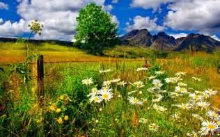 Spring Landscape Spring Landscape Related Keywords Amp Suggestions Spring