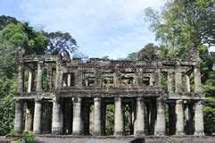testi buddisti tempio di preah khan siem reap cambogia fotografia stock