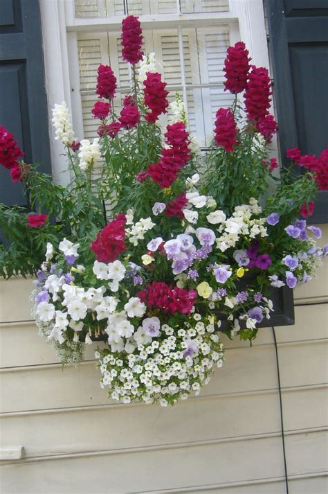 Flower Box Window Flower Box Arrangements Woodworking Projects Plans
