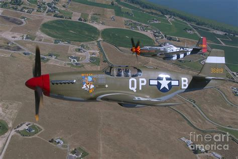 p 51c mustang p 51c mustang and p 51d mustang flying photograph by phil