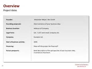 Business Overview Template De Micco Amp Friends Free Business Plan Template English
