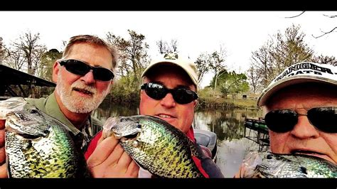 crappie fishing  england arkansas youtube