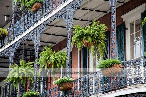 New Orleans Style House Plans 2010 04813 ireneabdouphotography com jpg irene abdou