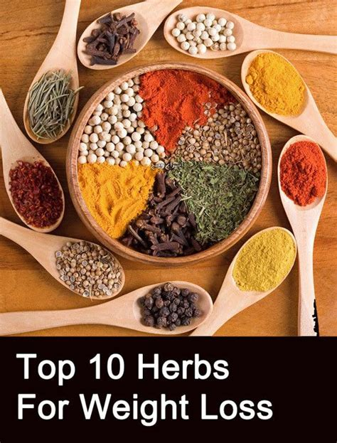 Detox Sle Resume by 17 Best Images About Healthy Herbs On Health Herbs For Anxiety And Chamomile Tea