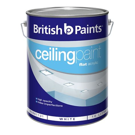 One Coat Ceiling Paint by Paints Inone 10l White One Coat Ceiling Paint I N