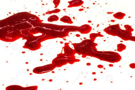imagenes asquerosas de sangre sciencuriosities 191 por qu 233 nos mareamos al ver la sangre