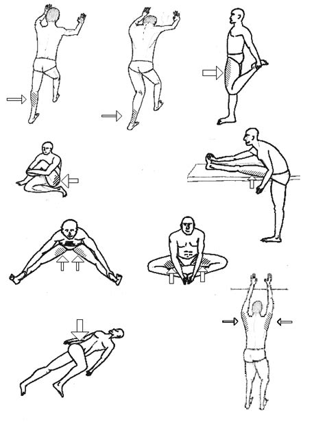Ejercicios de estiramiento y rodillas | Consultorio de