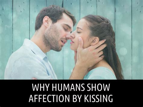 Why Humans Show Affection By Kissing Boldsky Com