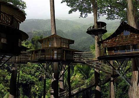 real life treehouse ewok village in costa rica who knew broke hoedown