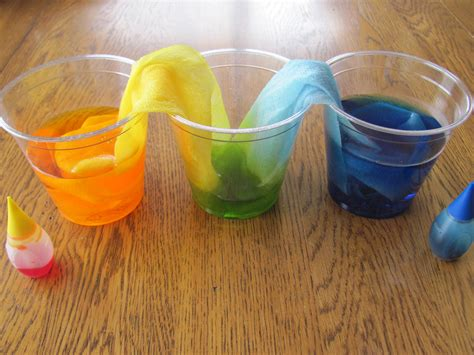 what is diy capillary action simulation diy