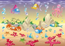 cartoon fish stock  images pictures  images