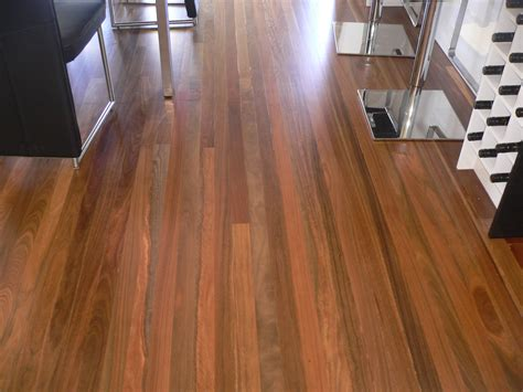 spotted gum laminate flooring wood floors