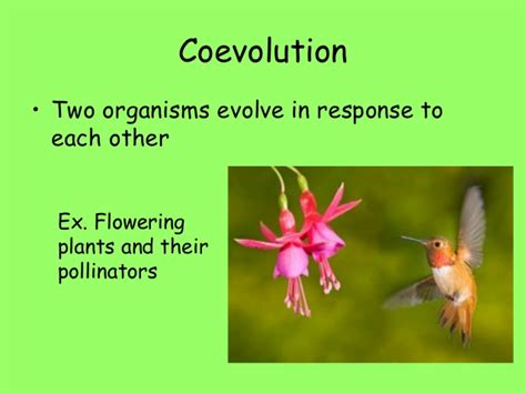 biology eoc review slideshow