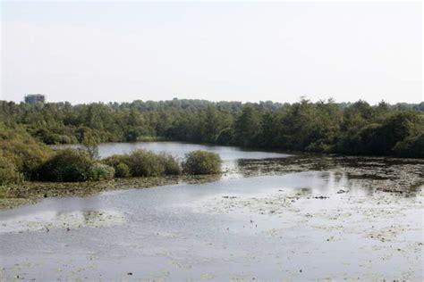 platte schuit moerputten a natuurgebied laagveenmoeras heusden