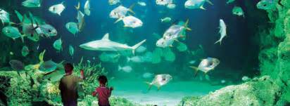 Private Dining Room Melbourne sea life sydney aquarium ferry captain cook cruises