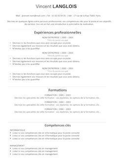 resume sample  call centre representative aka template