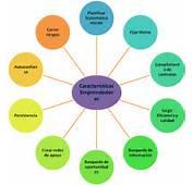 Administracion De Empresas Caracteristicas Emprendedoras