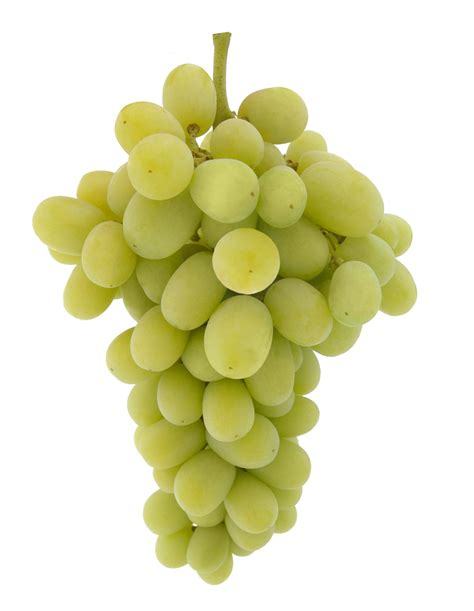 Seedless Raisin 500g buy grapes green seedless from hds foods