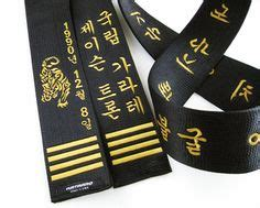 Korean Satin Flo revolution martial arts and fitness logo on a modern flow
