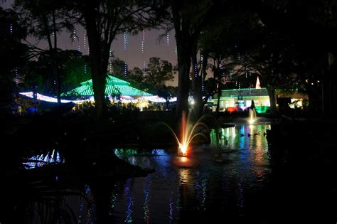 san antonio zoo lights a new tradition family