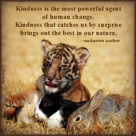 the kindness cure how the science of compassion can heal your and your world books quotes about kindness to animals quotesgram